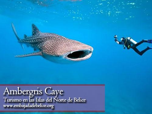 Turismo en Ambergris Caye, Belice